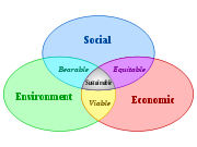 Societal Pillars - Social, Environmental, and Economic